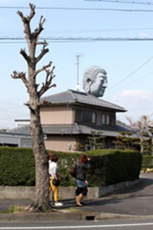 20100803_kyodaibutsu2_m